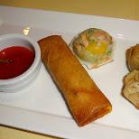 chinese delights in IJmuiden, Noord Holland, Netherlands