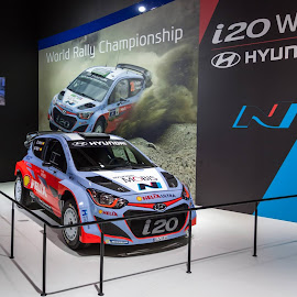 i20 WRC by Lucian Vlad-Calcic - Sports & Fitness Motorsports