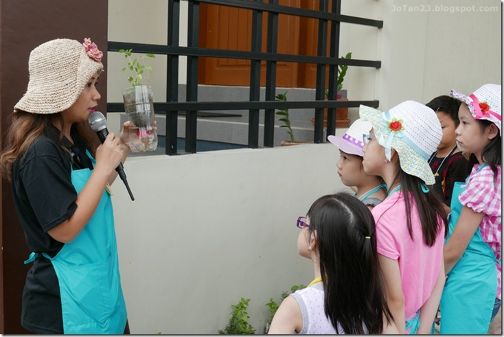 Jensen Kinder Farm Organic Farming for Kids and Adults Quezon City - jotan23 (5)