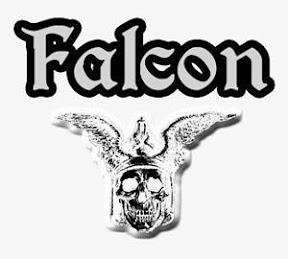 falconlogoreverse.jpg