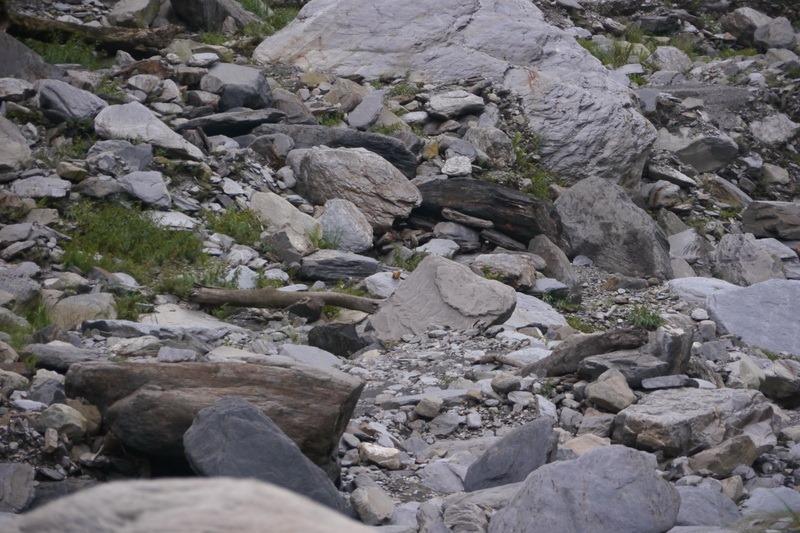 2014_0101-0105 萬山神石、萬山岩雕順訪萬頭蘭山_0898