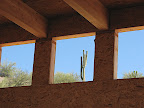 Close-up of saguaro in clerestory window