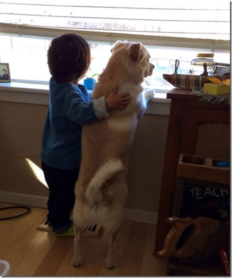 dog-love-friend-007