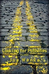 Looking for Potholes - Joe Wenke