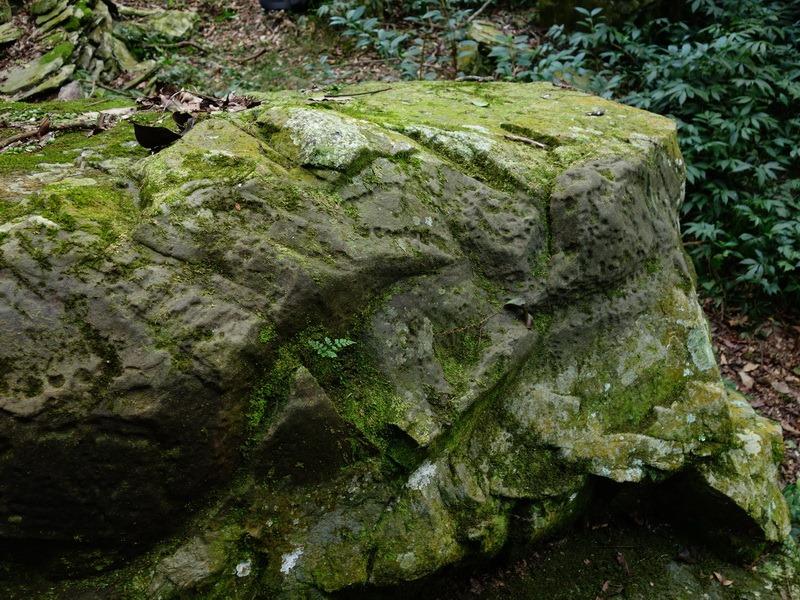 2014_0101-0105 萬山神石、萬山岩雕順訪萬頭蘭山_0487
