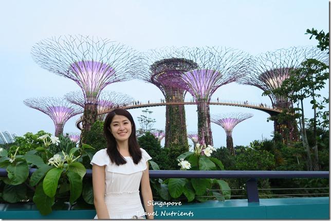 新加坡超級樹燈光秀 (12)