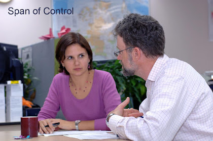 span of control meaning definition articles