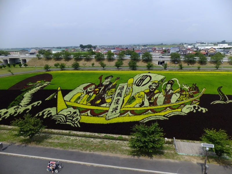 japanese-rice-paddy-art-12
