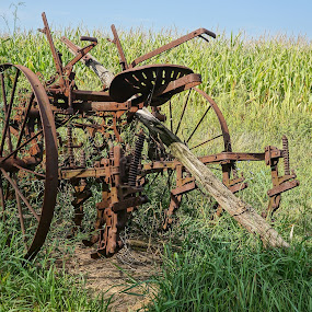 Antique by the Cornfield  by Jim Czech - Artistic Objects Antiques ( field, farm, antique machinery, farm implement, time scars,  )