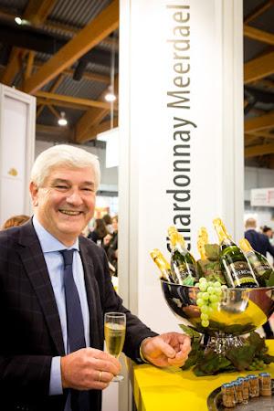 Chardonnay Meerdael Megavino