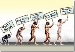 GayMarriageEvolution