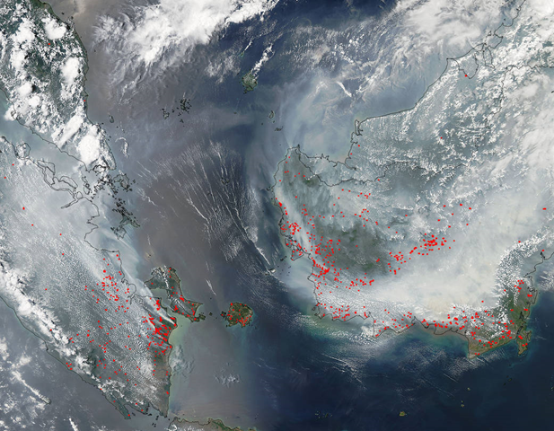 NASA's Aqua satellite collected this natural-color image with the Moderate Resolution Imaging Spectroradiometer, MODIS, instrument on 22 September 2015. Actively burning areas, detected by MODIS's thermal bands, are outlined in red. Photo: Jeff Schmaltz / LANCE/EOSDIS MODIS Rapid Response Team, GSFC