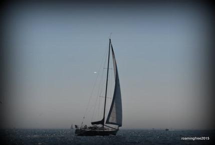 Sailboat on Lake St. Clair