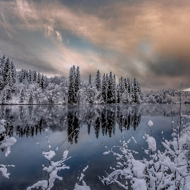 winther by Grete Øiamo - Landscapes Weather