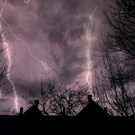 Night Storm by Dawn Marie - Uncategorized All Uncategorized ( clouds, lightning, sky, silhouette, night, branches, sotrm, teees, rooftops,  )