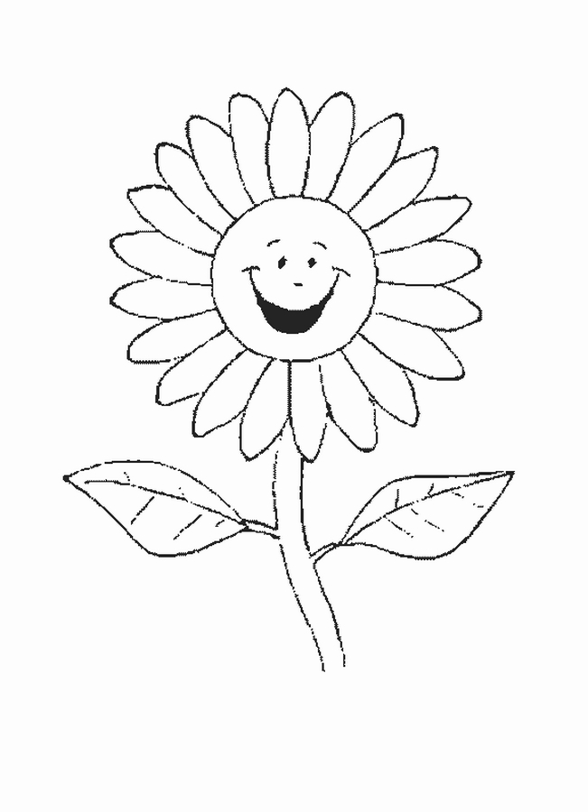 flowers coloring pages for kids - Coloring Wildflowers USDA Forest Service