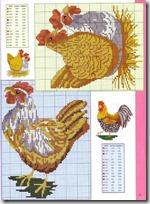 gallos y gallinas punto de cruz (6)