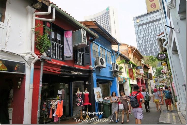 新加坡 哈芝巷 (8)