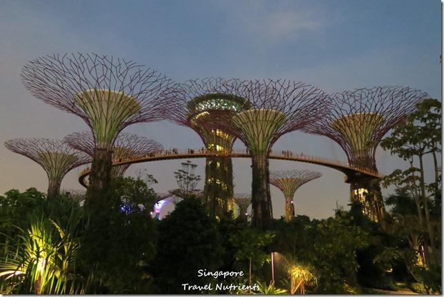 新加坡超級樹燈光秀 (17)