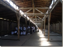 Auschwitz, Birkenau 008