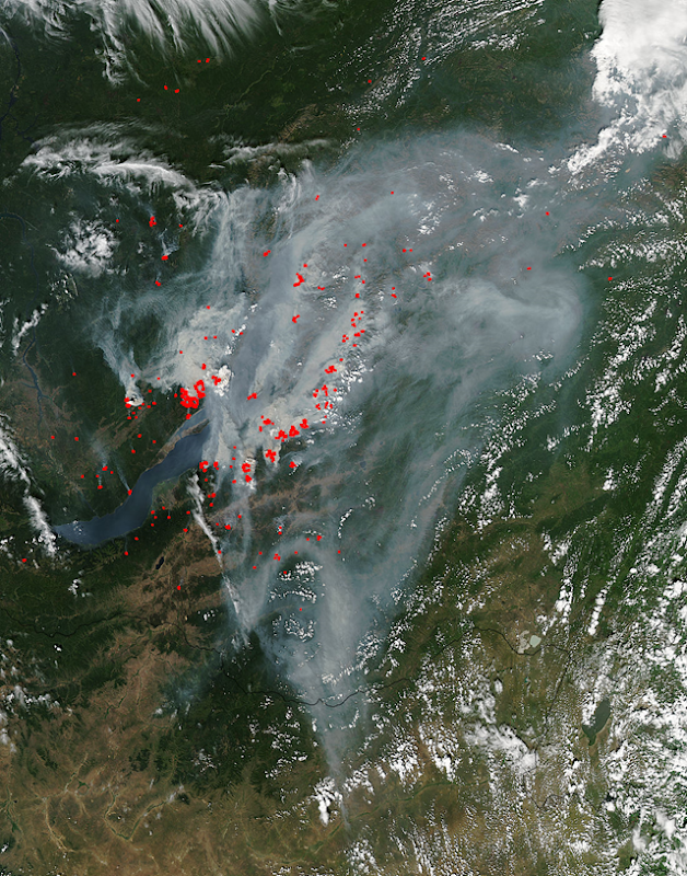 Satellite view of smoke and fires near Lake Baikal, Russia, 8 August 2015. Photo: NASA Terra/MODIS