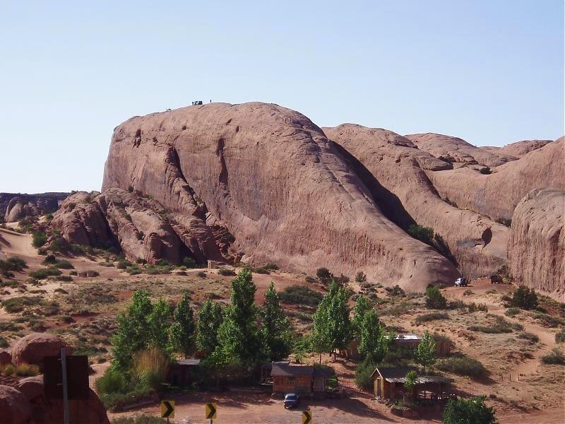 lions-back-moab-6