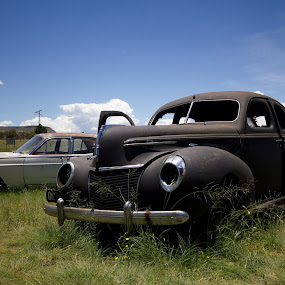 by Susan Pretorius - Transportation Automobiles (  )