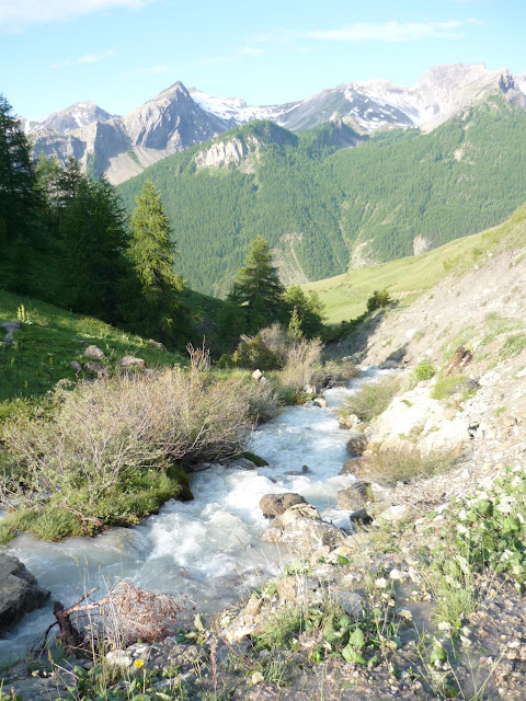 Via Alpina : De Larche à Chiaperra