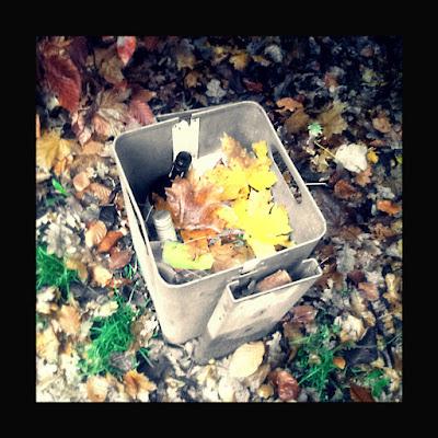 Schöner Herbst 1