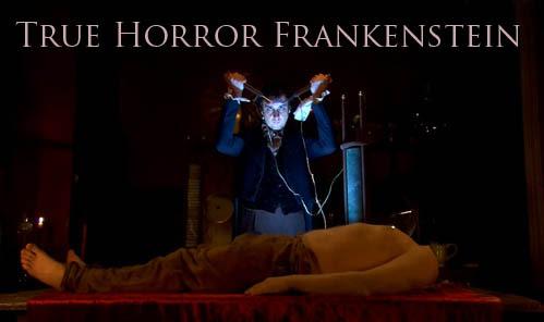 Prawdziwy horror Frankenstein / True Horror Frankenstein (2009) PL.TVRip.x264/ Lektor PL