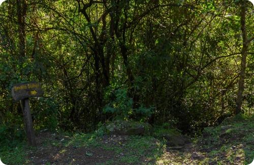 Parque provincial Cañadón de Profundidad6