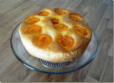 apricot, orange and ginger cake4