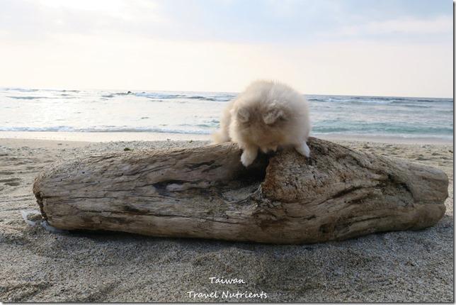 小琉球威尼斯海灘 (2)