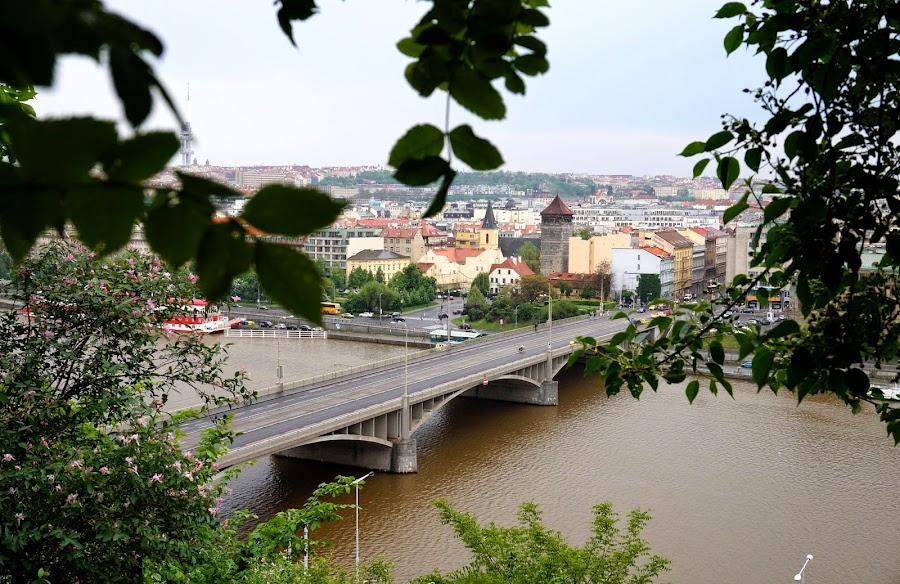 Стефаников мост