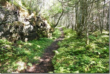 nl_cowhead_dorset_trail3