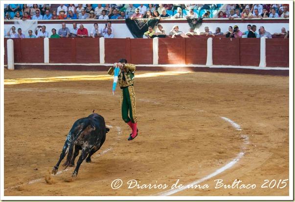 Toros Feria 2015-9856
