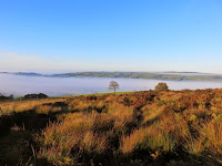 Mist In The Valley ... Looking From The Roaches
