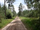 Circa 1 kilometer voor de laatste rust (29,1 km.).