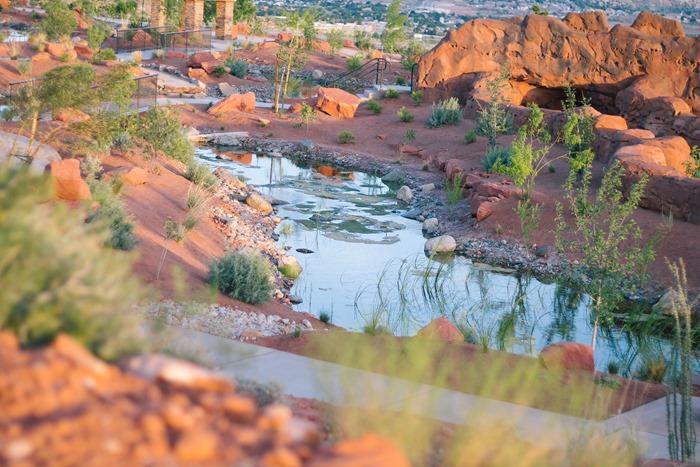 Red Hills Desert Garden (19)