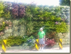 20150503_Flower Wall Cartagena (Small)