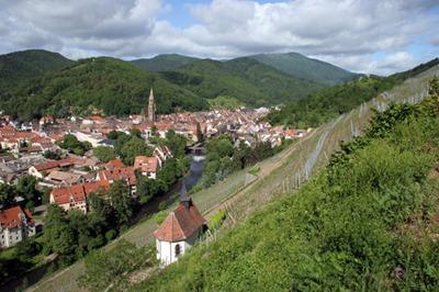 rangen-clos-saint-urbain