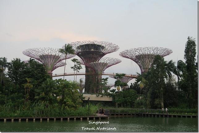 新加坡超級樹燈光秀 (3)