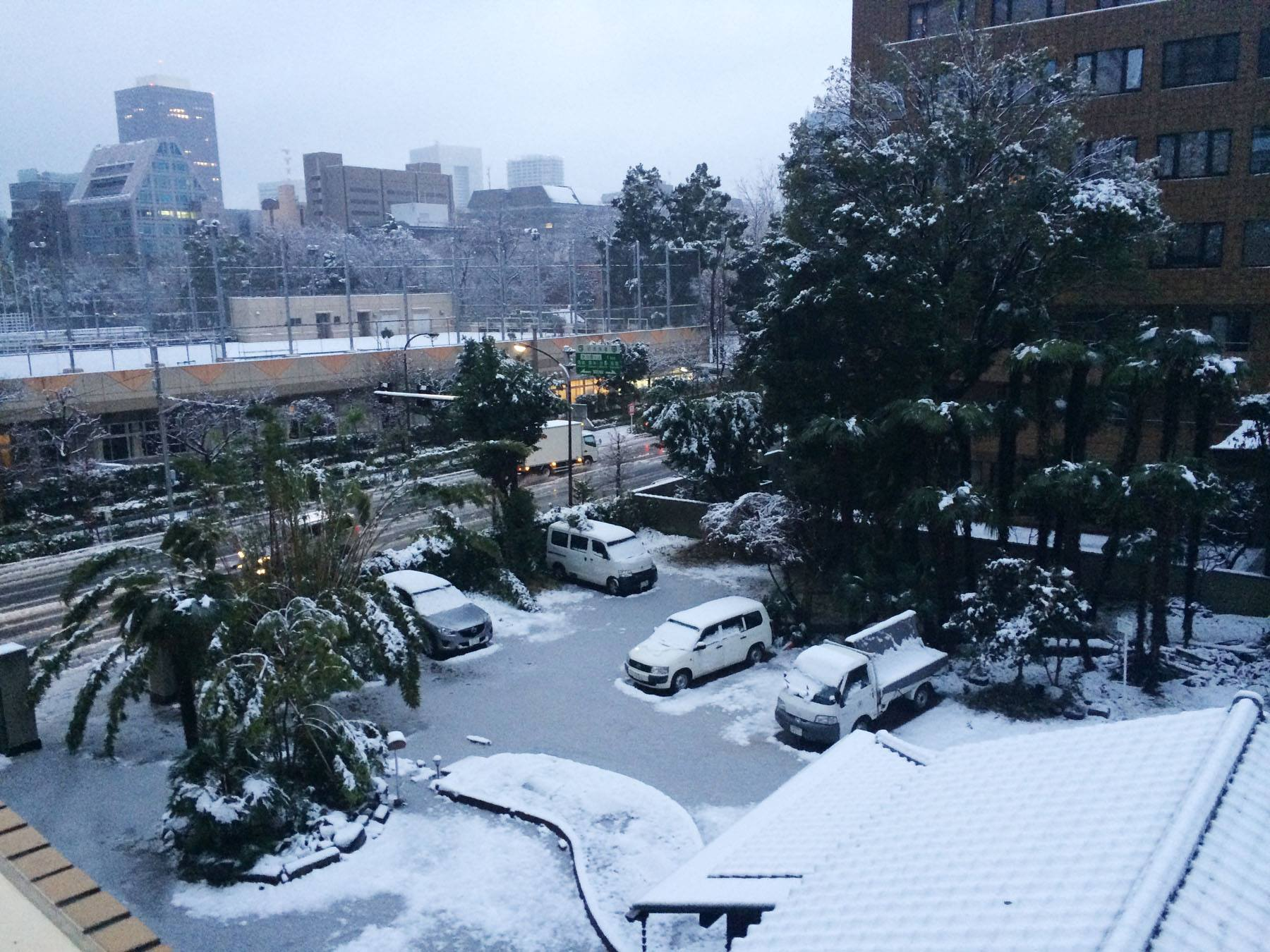 Image of November Snow, Japan After Almost 50 Years November Snow, November snow for the first time in over 50 years, wet snow in the capital of Japan, up to 1 inch of snow fell in city of Tokyo