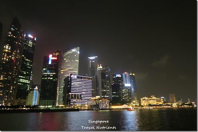 新加坡河岸 老巴剎 (6)