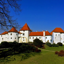 Old Town in Varazdin, Croatia by Alka Smile - Buildings & Architecture Public & Historical (  )