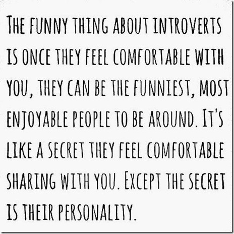 introverted-people-funny-013