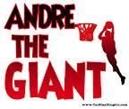 Andre-T-shirt.jpg