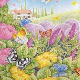 the_butterfly_garden_last_spd171_1.jpg