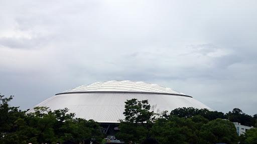 [写真]西武プリンスドーム様の御姿