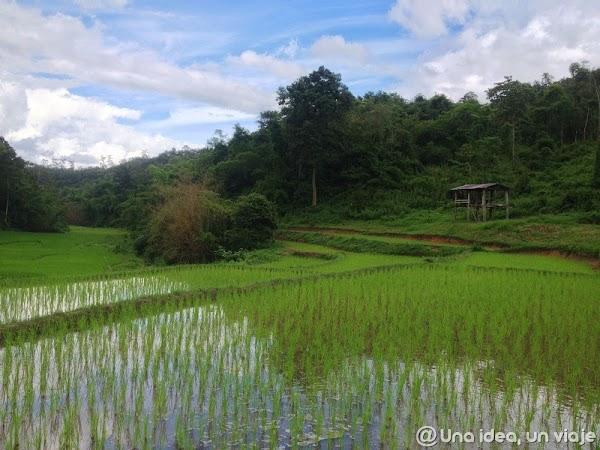 trekking-norte-tailandia-minorias-etnicas--unaideaunviaje.com-17.jpg